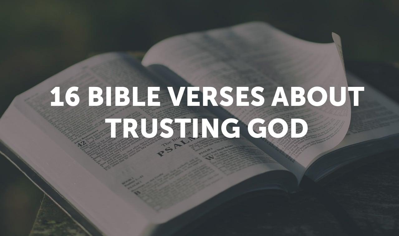 16-verses-storiespage