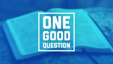 Cover of One Good Question series with an open bible in the background