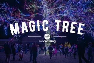 Magic-Tree_Web-Event
